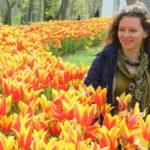 Где растут самые красивые тюльпаны на Земле? Спешим в Стамбул на фестиваль тюльпанов!